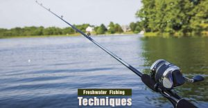 Freshwater Fishing Techniques