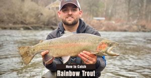 How to Catch Rainbow Trout