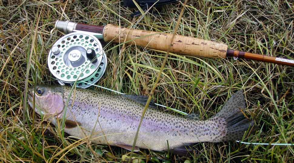 Process of Perfect Fly Fishing for Trout