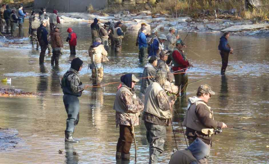 Steelhead Banks Fishing