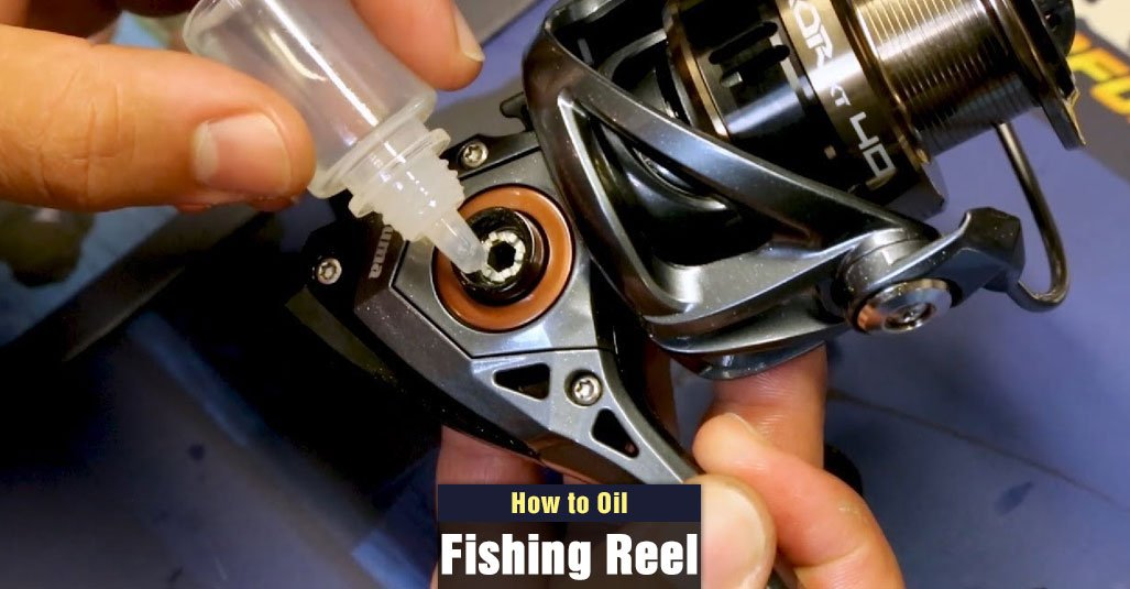 How To Oil Fishing Reel