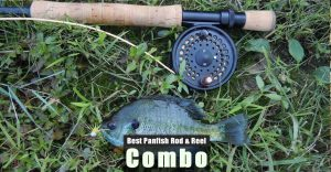 Best Panfish Rod and Reel Combo