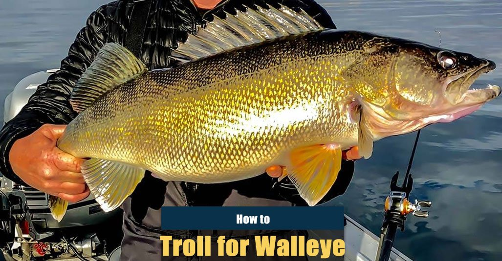 How to Troll for Walleye for Beginners