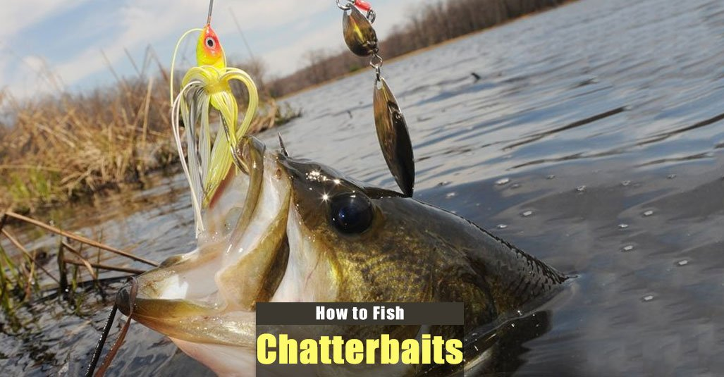 How to Fish a Chatterbait