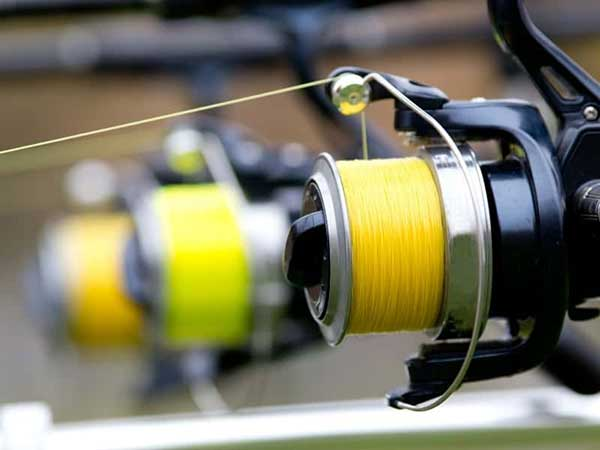What type of reel will be ideal